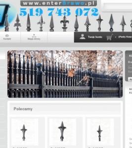 Sklep internetowy Enterbrawo.pl – wykonanie strony i logotypu