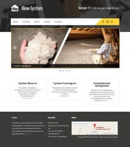 Blow-System.pl – wykonanie strony i logotypu